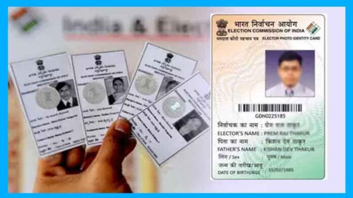 Colour Voter ID Card